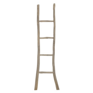 Ladder Can Escandall